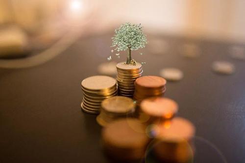 财经知识:货币市场基金的特点